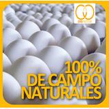Cajon De Huevos De Campo Premium Extra Large 100% Naturales