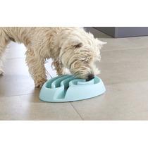 Buster Maze Mini Plato De Perro Para Comer Lento. Croquetas