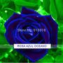 Semilla De Rosa Azul Oceano, Rara Genetica Rosas Azules