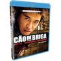 Cão De Briga - Blu-ray - Jet Li - Morgan Freeman Semi Novo