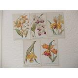 2957- Lote 10 Postales Orquideas Derrasse Lab., Francia