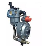 Kit Conversion Carburador Nafta Gas Generador 2000 A 3500 W