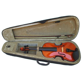 Violino Parrot 4/4 Seminovo