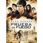 Dvd Maze Runner Prueba De Fuego Estreno Original Nueva