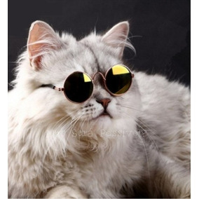 70b758dab7e44 Óculos Pet Amarelo Ou Transparente -gatos E Cães-roupa Pet