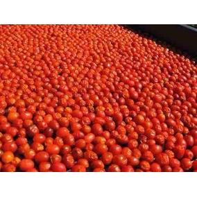 Chile Chiltepin Rojo Seco De Sonora El Original
