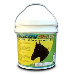 Cavalo Manga Larga Quarto Milha Núcleo Mineral 50kg E Brinde