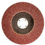 Disco De Lixa Flap Disc 4.1/2 - Mtx (40)