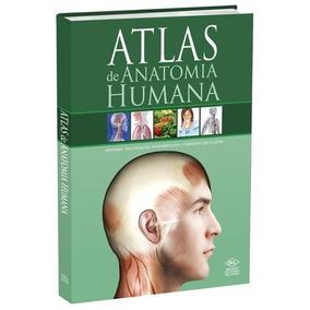 Atlas De Anatomia Humana - Sistema - Fecundaçao - Enfermidad