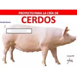 Paquete Cría Cerdos, Chanchos, Instalaciones Porcinas Y Más!
