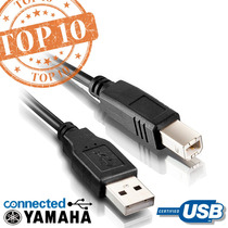 Cabo Usb 2.0 1.8m Interface Teclado Yamaha/casio/roland/korg