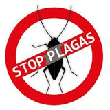 Fumigacion Control De Plagas /exterminio De Cucarachas