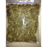 Musgo Verde Desidratado Pacote 250g Decoração Tipo Graminha