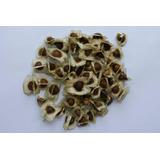 150 Sementes De Moringa Oleifera