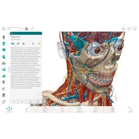 Software 3d Cuerpo Humano Medicina Anatomía Premium Digital