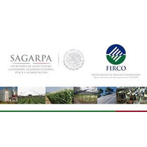 Corrida Financiera Para Forraje Verde Hidroponico