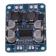 2 Placa Amplificador Digital 60 W Rms 12v A 24v Tpa3118 Mono