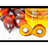 Aceite De Palma Reciclado Especial Para Jabones Maracaibo Zu