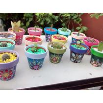 15 Souvenirs En Maceta Pintada A Mano Con Cactus O Suculenta