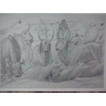 Portinari - Gravura Rara - Boiada - 3s Arte
