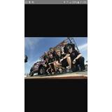 Remató Polera Original Team Monster Mini X-raid Dakar 2013