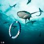 Lokai Shark Maravilhosa Edição Limitada