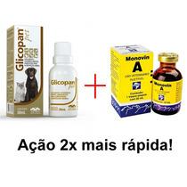 Kit Glicopan Pet 30ml + Monovin A 20ml