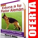 Guía De Entrenamiento Para Perro Pastor Aleman 5