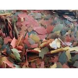Hojuela Para Peces 1 Kilo Gramo Marca Tropical Pethome