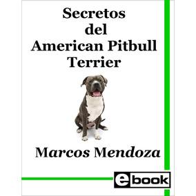 Pitbull Americano Terrier Libro Entrenamiento Canino