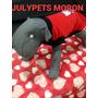 Disfraz Perro Kitty 25 Cm Caniche Toy Moron Envios Julypets