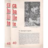Revista Caballete N° 40 / 45 (1967) Lote X 2