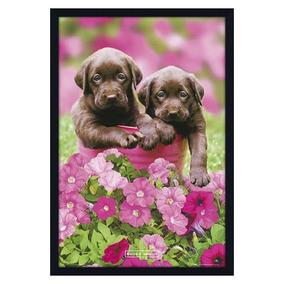 Quadro Decorativo Poster Filhotes Cachorros Marrons 64x94cm e4b00661ecea8