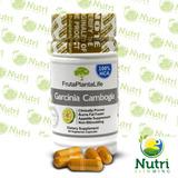 Garcínia Cambogia Fruta Planta Life 60 Cápsulas G3 + Brinde