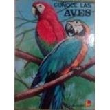 Conoce Las Aves Tropicales: 42 Especies Para Colorear