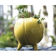 Maceta De Ceramica Esmaltada Gajos - Ruge