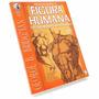 Livro George Bridgman Desenhar Mecanismos Do Corpo Humano