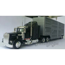 Kenworth W900 1/43 New Ray