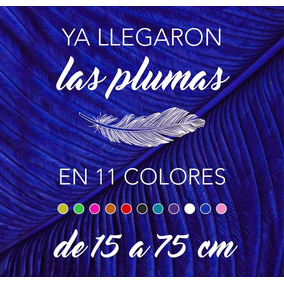 Plumas De Avestruz Espadonas De 55 A 64 Cm, En 11 Colores.
