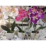 Mini Macetas Con Orquídeas Artificiales, Adorno, Souvenirs.
