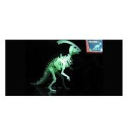Esqueleto Dinozaurio Brilla En La Oscuridad Ar1 059 Ellobo