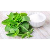 Stevia Rebaudiana 5000 Sementes Para Mudas Manual Cultivo