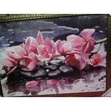 Orquidea Pink Cor De Rosa Nas Pedras 75x55cm Com Moldura
