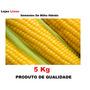 Sementes De Milho Hibrido Ag 1051 Agroceres 5kg