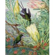 Pintura Numerada Beija-flor Vintage_p2