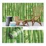 DP134 Bambú