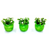 Kit Com 3 Vasos Cachepô Decorativo Com Plantas Artificiais