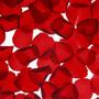 Pétalos De Rosas Bolsa 200gr Evento Decoración Souvenir