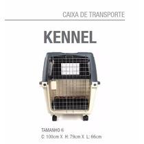 Casinha De Cão Cães Gato Avião - Kennel N6