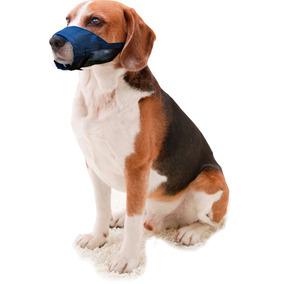 Focinheira Nylon Com Tela Cães Cachorro Pet Escolha Tamanho